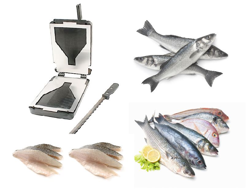 Fish Filleting Machine Australia - Fillet Fish Automatically